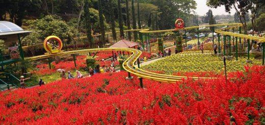 Pakej Percutian Ke Malang Surabaya 1 Hari
