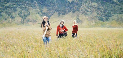 Padang Savannah Gunung Bromo Surabaya