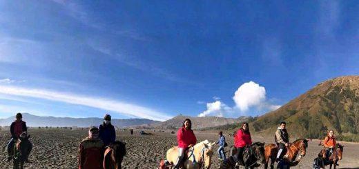 Perkhidmatan Sewa Kuda Gunung Bromo