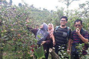 Pakej Percutian Surabaya Dari Bali