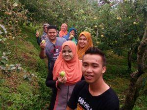 Percutian Ke Ladang Epel Di Malang Surabaya