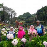 Percutian Surabaya Bromo Malang – Rahman