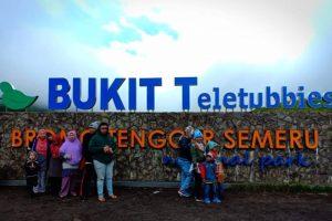Bukit Teletubbies Gunung Bromo Surabaya