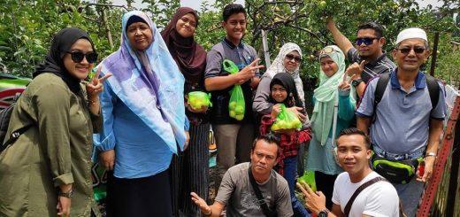 Pakej Percutian Surabaya Bromo Malang - Liza