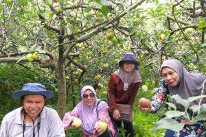 Pakej Percutian Surabaya Bromo Malang – Jalal