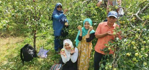 Pakej Percutian Surabaya Bromo Malang – Noor Adib